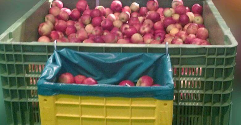 Cat de folosite sunt containerele pentru fructe si legume?