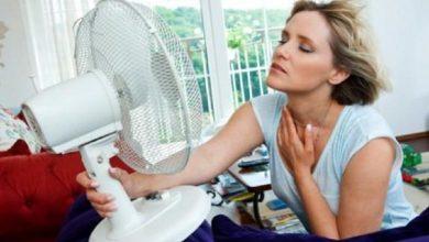 Cum sa ai racoare in casa pe timpul verii?