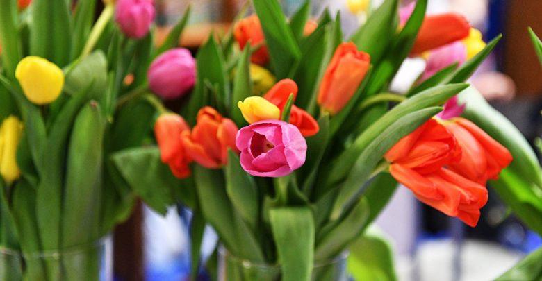 cele mai frumoase 8 flori din lume